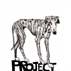 Project Galgo